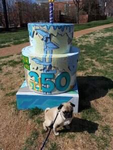 Cake #49 at Shaw Park